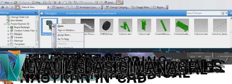 Vault Basic